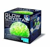 Mac Toys Pěstování svítících krystalů