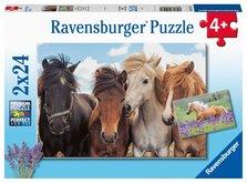 Ravensburger 051489 Fotky koní 2x24 dílků