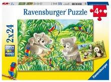 Ravensburger Koaly a pandy 2 x 24 dílků